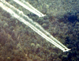 Agent Orange herbicide exposure