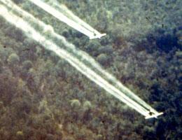 Agent Orange herbicide exposure