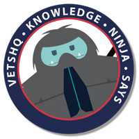 VetsHQ Knowledge Ninja